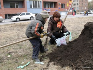 ребенок садит деревья