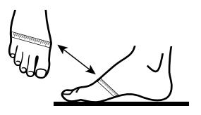 Полнота стопы