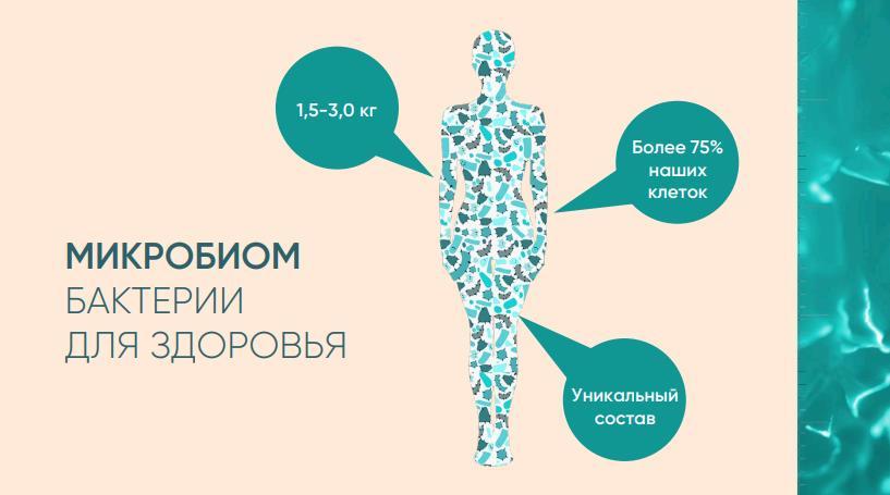 Бактерии в теле