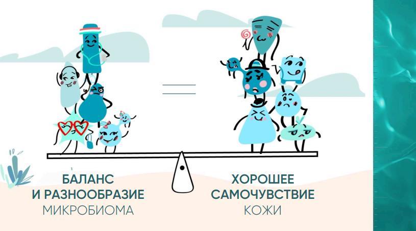 Бактерии на качелях